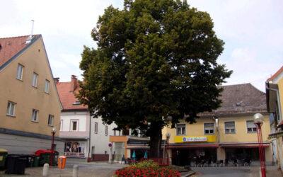 Orastie – Koflach